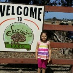 Suzi's Farms@