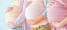 pregnancy_l